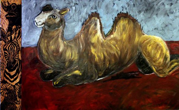 Camel Resting thumbnail